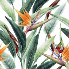 Kwiaty, egzotyczny wzór, strelicja, akwarela