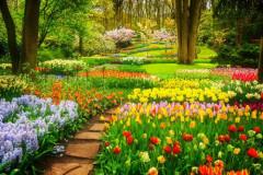 Wiosenny ogród pełen kwiatów